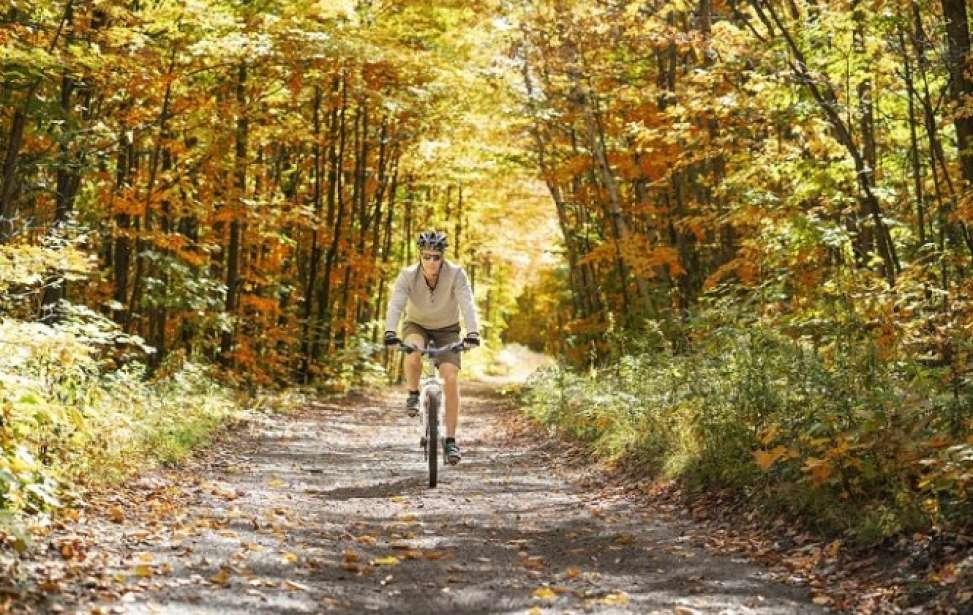 Bikers Rio Pardo | Dica | Mountain bike para iniciantes: 9 dicas que todo mundo precisa conhecer
