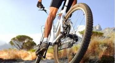 Bikers Rio pardo | Artigo | Aumente o processo de queima de gordura no pedal