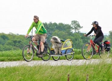 Bikers Rio Pardo | NOTÍCIAS | Europa planeja 70 mil km de rotas cicloturísticas conectando 42 países
