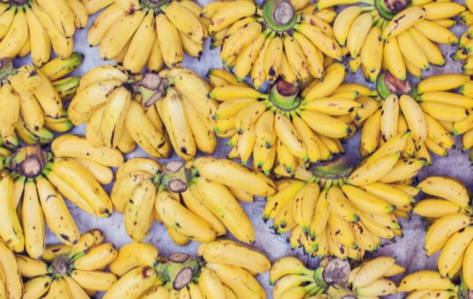 Bikers Rio pardo | Dicas | 5 receitas com banana para quem pratica esportes