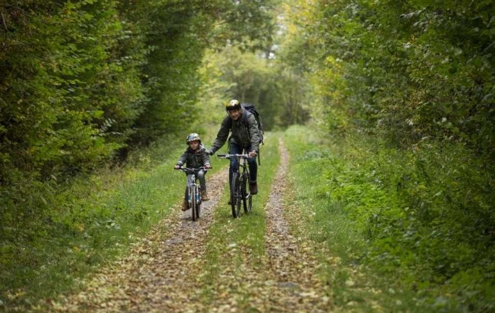 Bikers Rio pardo | Notícia | Lanche grátis é recompensa aos alunos que vão pedalando à escola em Portugal